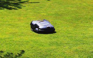 robot a gazon qui tond l'herbe